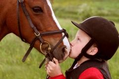 Hestefoto Hestefotograf Professionel fotograf Kastrup Jægerspris Skibby Amager Frederikssund_Mikkel_Urup (1)