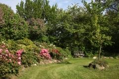 udendørs_fotomuligheder_fotostudie_anlagt_have_rhododendroner_fotograf_bryllup